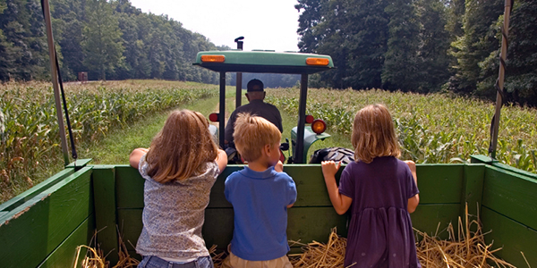 Farm Liability Insurance